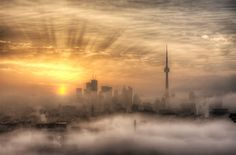 Foggy Toronto Sunrise, Canada (by Richard Gottardo). Toronto Canada, Canada Eh, Beautiful World, Beautiful Places, Beautiful Scenery, Toronto Skyline, Toronto Photos, Land Scape, Great Barrier Reef