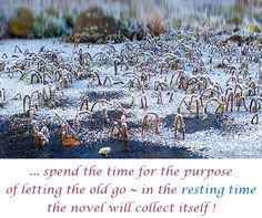 ... spend the time for the purpose of letting the old go ~ in the #resting_time the novel will collect itself !