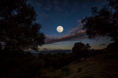 Calaveras Moon - JohnSlotPhotography.com