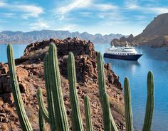 JOIN ME in Baja for a Photo Expedition Cruise  - What's New - EllenBarone.com