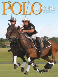 I want to go to Barbados polo again. Barbados, Falling In Love, Things I Want, Cruise, To Go, Horses, Island, Lifestyle, Animals