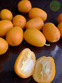 koum kouat Fruit, Blog, Blogging