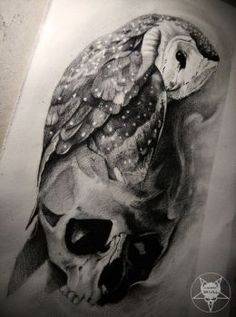 owl by AndreySkull