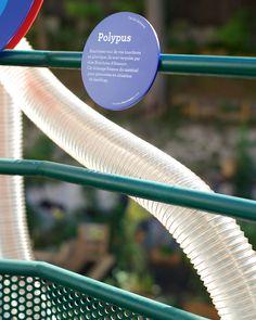 Polypus - Installation artistique - Les jardins du ruisseau, Paris - 2017