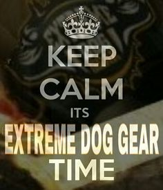 Keep Calm its Extreme Dog Gear Time