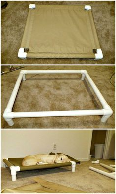 How To Build A PVC Dog Bed Tutorial - 9 DIY Dog Bed Ideas Using PVC Pipe - DIY & Crafts funny and vine compilation funny, and pets r family toothache. Pvc Dog Bed, Dog Bed Frame, Dog Hammock, Wood Dog Bed, Pallet Dog Beds, Dog Rooms, Dog Crafts, Diy Bed, Cat Furniture