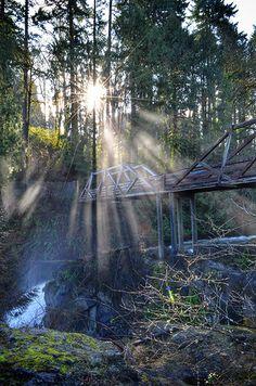 Walking Bridge | Tumwater Falls Park, Olympia Washington