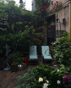 Terrace vibes at dusk, roses, gardenias and hydrangea in full bloom..