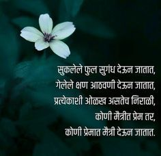 Jokes Quotes, New Quotes, Mood Quotes, Crush Quotes, Funny Quotes, Marathi Love Quotes, Marathi Poems, Hindi Quotes, Adorable Quotes
