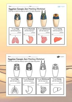 Ancient Egypt- Canopic Jars Organs Worksheet-- make it lift-the-flap instead of draw-line-to-match Ancient Egypt Lessons, Ancient Egypt Activities, Ancient Egypt For Kids, Ancient Egypt Crafts, Ancient Aliens, Ancient Greece, Ancient World History, Women's History, European History