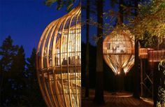 yellow-tree-house-new-zealand-pacific-environment-architects11