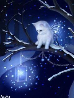angel cat on the night I Love Cats, Cute Cats, Animals And Pets, Cute Animals, Cute Animal Drawings, Cat Drawing, Cat Gif, Beautiful Cats, Cute Wallpapers