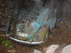 I am not a VW guy, but even I know how rare and valuable a split window is.