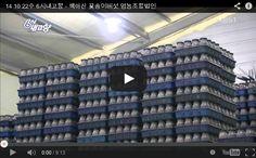 14.10.22(수) - 6시 내고향 백아산 꽃송이버섯 영농조합법인 방영분