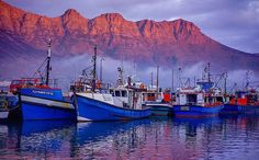 Fishing Boats, Old Pictures, Cape Town, Places Ive Been, South Africa, Egypt, Landscapes, African, Explore