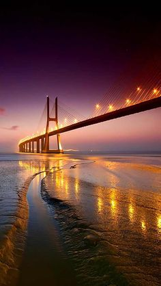 Scary Bridges, Photo Illustration, Illustrations, City Lights, Golden Gate Bridge, Night Skies, Beautiful Places, Beautiful Scenery, Simply Beautiful
