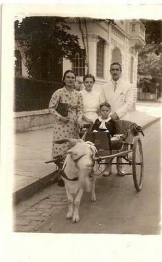 Charrete do bodinho no bairro da Liberdade (foto sem data - autoria desconhecida).