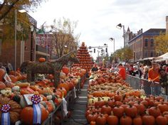 Pumpkin show, Circleville, Ohio