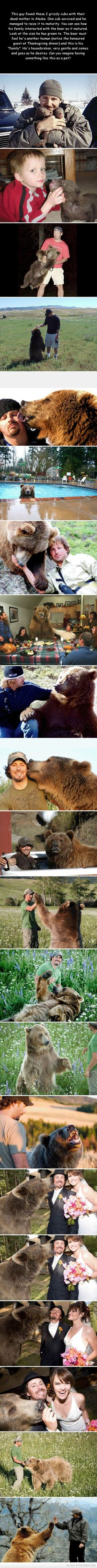 The Story Of A Man And A Bear. This is awesome!