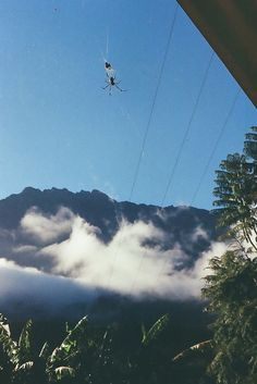 Une bibe, Cilaos, Reunion Island