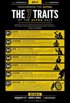 7 Traits of an Alpha Male