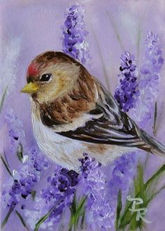 Paulie Rollins~ A Little Patch Of Lavender