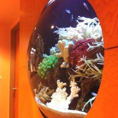 Bubble fish tank wall