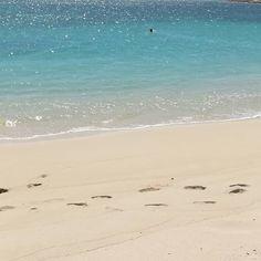 Ningaloo reef in #downunder