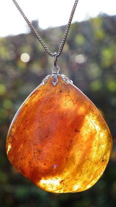 Baltic Sea Amber Pendant
