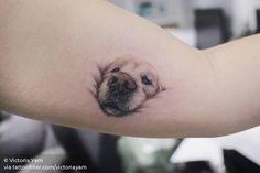 """I want to tattoo my dog& nose"" - Tattoo - .-""Ich möchte die Nase meines Hundes tätowieren"" – Tattoo – ""I want to tattoo my dog& nose"" – Tattoo – tattoo like to - Tatoo Dog, Cute Cat Tattoo, Cute Tattoos, Body Art Tattoos, I Tattoo, Tattoos For Guys, Tattoos Of Dogs, Dog Pawprint Tattoo, Grey Tattoo"