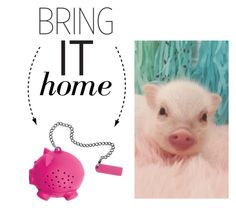 """""""Bring It Home: Pig Tea Infuser"""" by polyvore-editorial ❤ liked on Polyvore featuring interior, interiors, interior design, home, home decor, interior decorating, Tovolo and bringithome"""