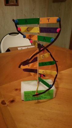 Dna model made of sticks straws and clay favorite places diy dna model solutioingenieria Choice Image