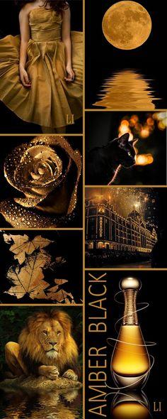 amber | black ღ Lu's Inspiration