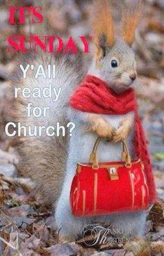 Happy Sunday...
