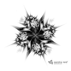 Black and White Abstract Art Print titled 'A Simple Elegance' by Wellington Artist, Sandra Reid.  This gorgeous artwork would be perfect for a Scandi style home or those who love monochrome wall art.