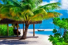 Save BIG on cheap airline tickets with CheapOair! We offer cheap flight tickets, hotels and car rental deals year round. Book now & Travel the world for less! Car Rental Deals, Cheap Airlines, Beautiful Nature Pictures, Cheap Tickets, Airline Tickets, Dream Life, Beautiful Homes, Paradise, Stock Photos