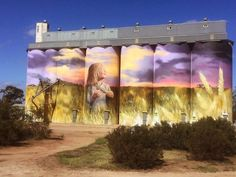 The afternoon sun strikes the eye catching artwork of Cam Scale on the grain silos outside Kimba. I'll be meeting with communities across the Eyre Peninsula and West Coast this week.