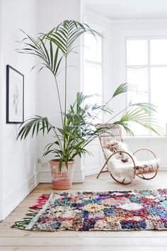 bohemian scandinavian apartment with moroccan rugs, wall art and design furniture, houseplants
