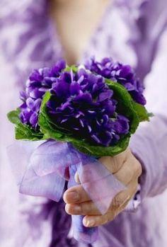 《 ᵛ ᶤ ᵃ ᶰ ᶰ ᵉ´ ˢ violets 》