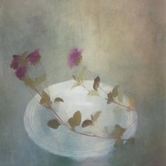 Wild flowers on a plate in the kitchen