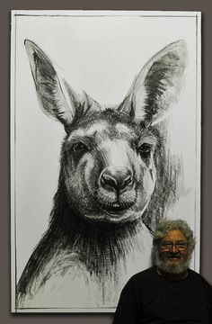 Portrait of Kangaroo 13 Drawings of 'Jilly' a young eastern grey kangaroo by Michael Chorney Year: 2015 Size: Drawing 1110 x 1720mm Media: Conti and graphite on frame stretched paper.