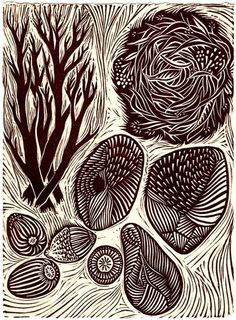 Gathering - Linocut Relief Print - acorn / branch / seed / stone pod / shell / nest / brown / nature