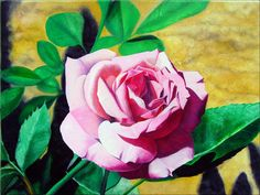 Little Pink Rose    Oil on Canvas - 40cm x 30cm - ©2007, Matthew Bates, All Rights Reserved