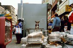 Around Any Corner, Moments That Endure - NYTimes.com
