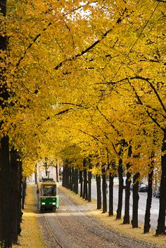 Tram in Helsinki, Finland fall travel photography place to visit and see bucket list ideas colorful fall photos yellow leaves Helsinki, Finland Travel, Best Cities, Alaska, Norway, Beautiful Places, Road Trip, Scenery, Places To Visit