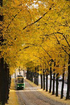 Tram in Helsinki by Tanel Voormansik on 500px