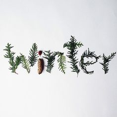 #winter #typography
