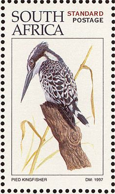 Pied Kingfisher stamps - mainly images - gallery format
