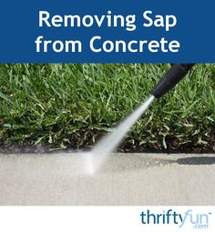 Trees overhanging your driveway, sidewalk, or patio can drip sap on to the concrete surface leaving you with a sticky mess to clean up. This is a guide about removing sap from concrete.