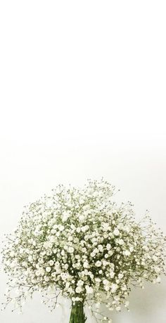 58 Ideas Wallpaper White Flowers Iphone For 2019 Ombre Wallpaper Iphone, Pastel Wallpaper, Aesthetic Iphone Wallpaper, Aesthetic Wallpapers, Flower Background Wallpaper, Flower Backgrounds, White Flowers, Beautiful Flowers, Most Beautiful Wallpaper